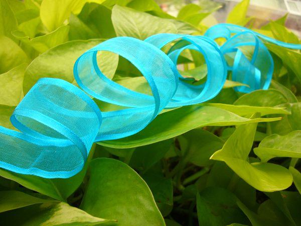 緞帶-6 寶藍雪紗帶(寬2cm)*5碼