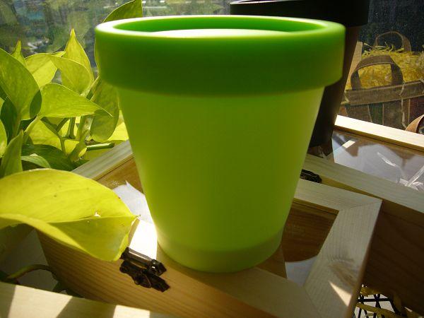 200g拉許杯-4    粉綠50個*1...可幫您代購